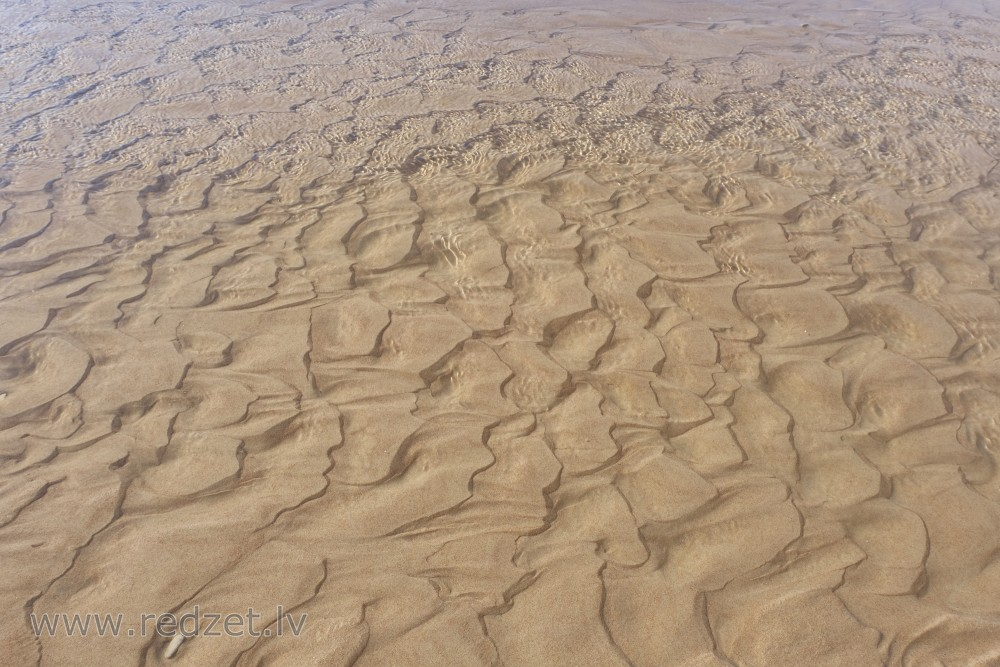 Sand in the Shallow Sea