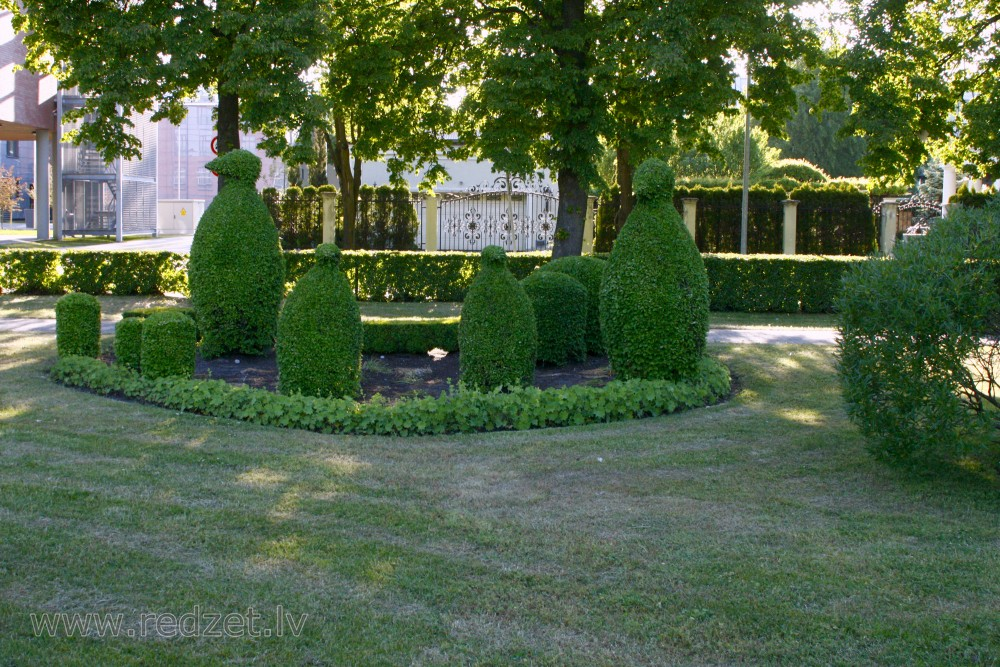 Shaped bushes in Mill Square, Ventspils