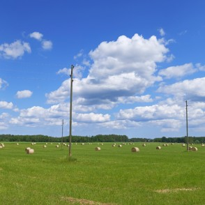Summer Rural Panorama with Hay Rolls on a Green Meadow