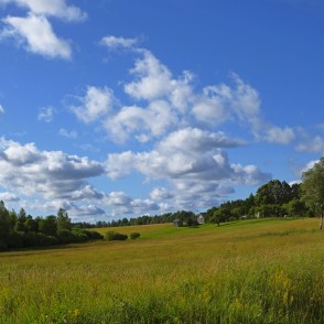 Countryside Landscape With Cumulus Clouds