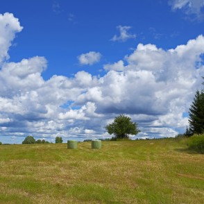 Landscape With Cumulus Clouds And Hay Rolls