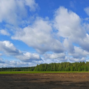 Panorama With Cumulus Clouds And Plowed Field