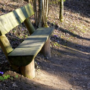 Bench in Barona Trail of Vilce Nature Park
