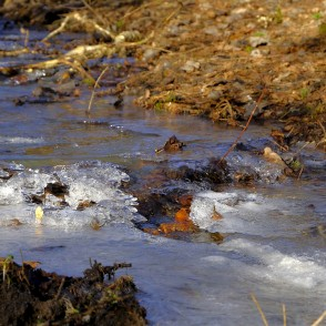Stream and Frozen Water