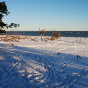 Cape Kolka in Winter