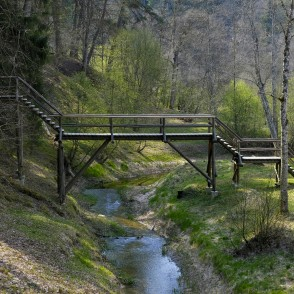 Footbridge of Sprīdītis (Tom Thumb) in Tervete Nature Park