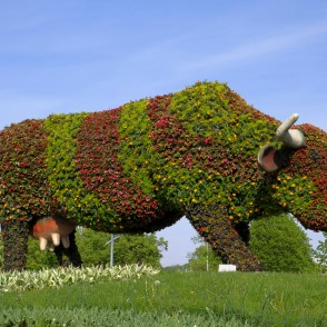 "Flower bed ""Flower Cow"" in Ventspils"