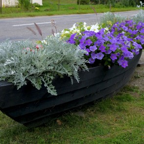 Flower Bed in a Boat, Kolka